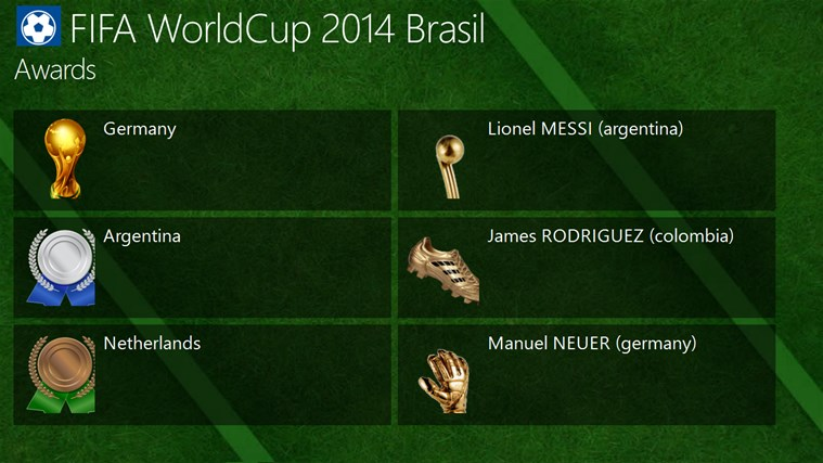 FIFA World Cup 2014 Brasil screen shot 4