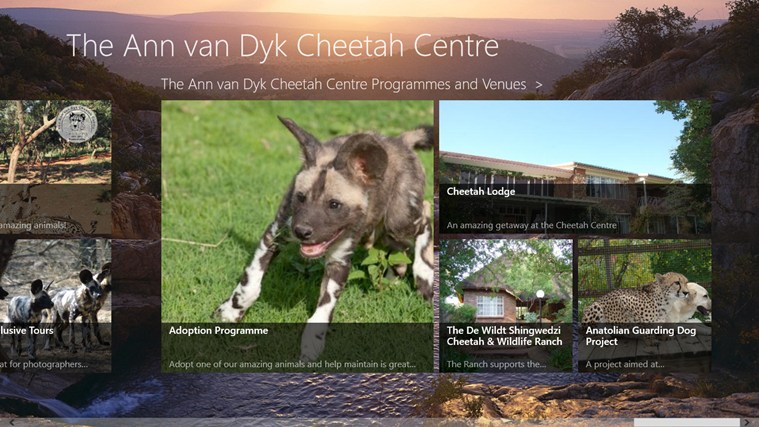 The Ann van Dyk Cheetah Centre skermskoot 6