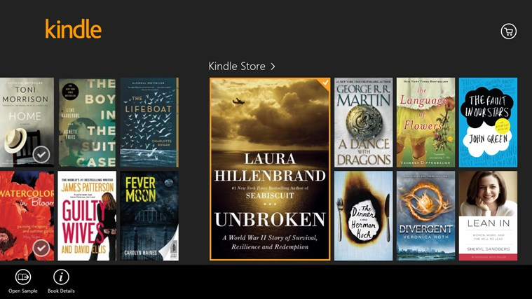 Kindle screen shot 8