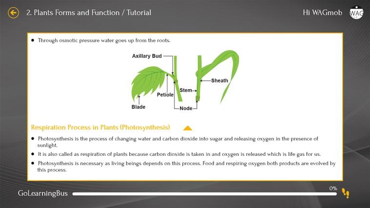 Grade 6 Science by WAGmob screen shot 6