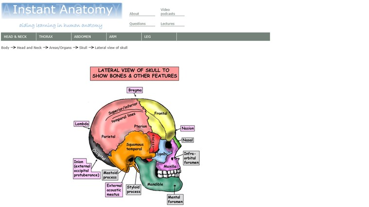 Instant Anatomy screen shot 2