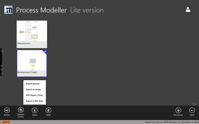 Process Modeller screen shot 4