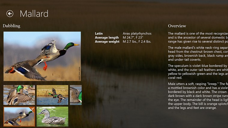 Ducks Unlimited screen shot 6