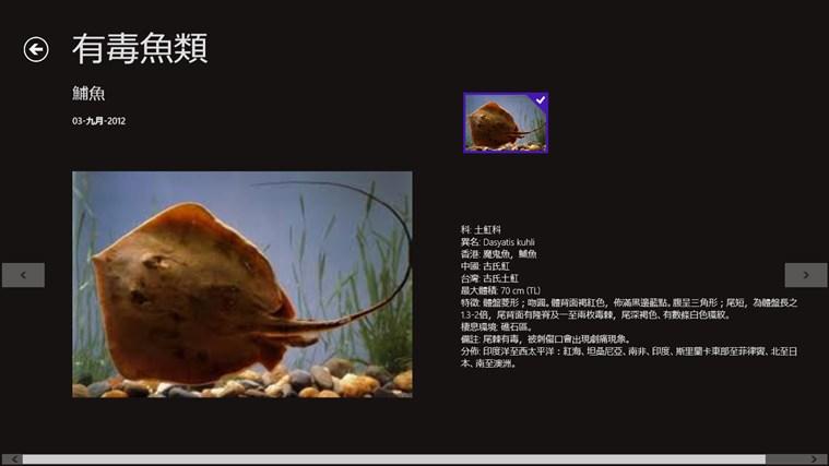 釣魚保鑑 螢幕擷取畫面 2