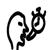Icon.145686