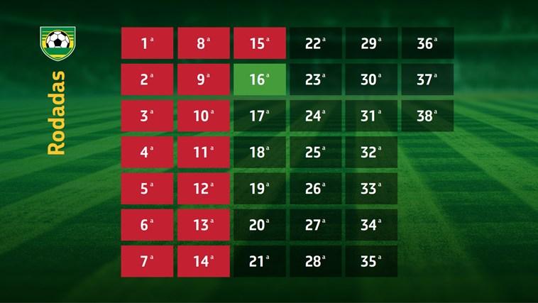 Campeonato Brasileiro 2013 captura de tela 6