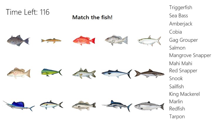 Different types of fishes names list of fish names 2017 for All fish names