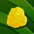 Icon.285105