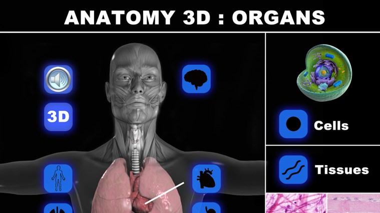 Anatomy 3D: Organs screen shot 0