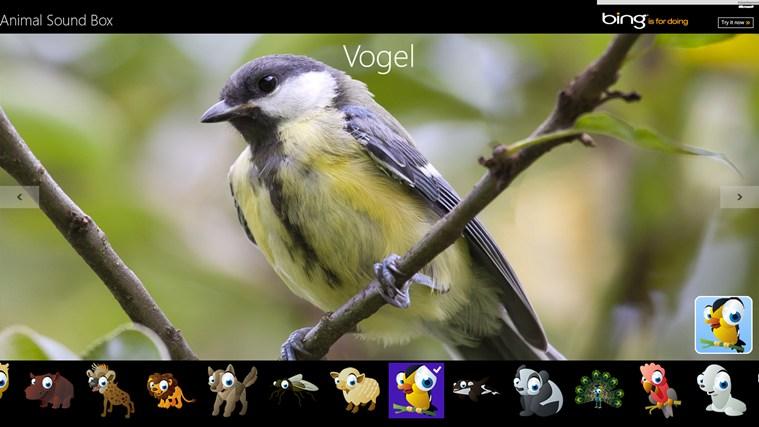 Animal Sound Box schermafbeelding 0