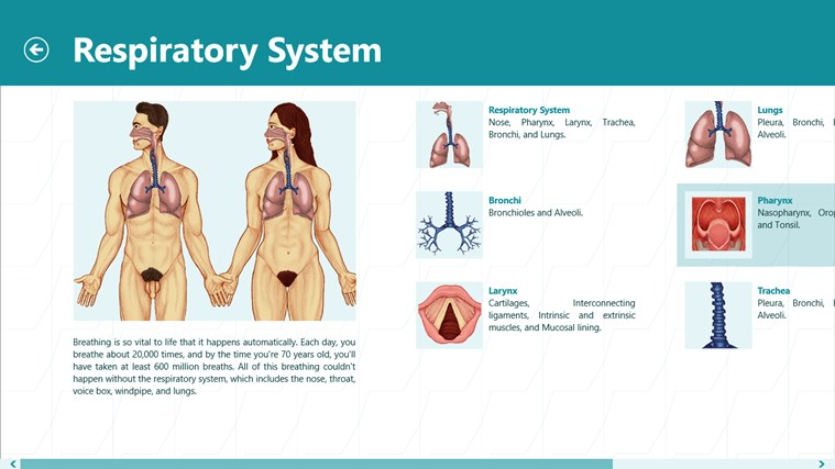 Human Encyclopedia schermafbeelding 4