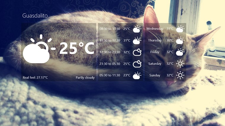 Weather Kitty screen shot 0