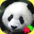 Icon.89503