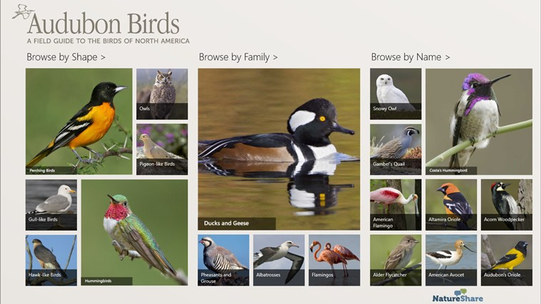 Audubon Birds - A Field Guide to North American Birds screen shot 0