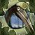 Icon.328856