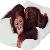 Icon.35867