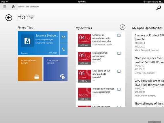 Microsoft Dynamics CRM screen shot 4