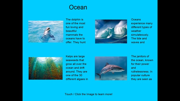 Four Ocean Ecosystem Facts Ocean Ecosystem Animals