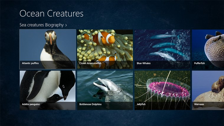 Ocean Creatures screen shot 0