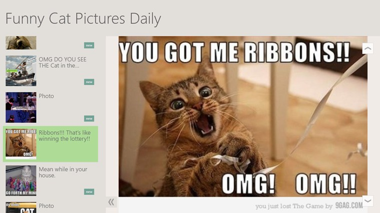 Funny Cat Pictures Daily screen shot 0
