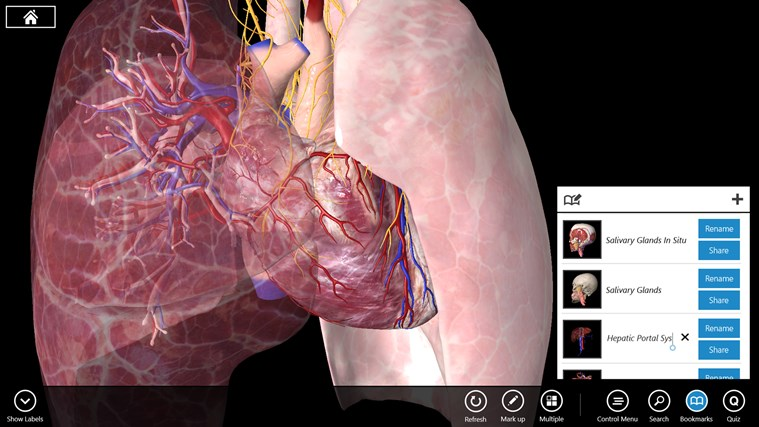 Essential Anatomy 3 screen shot 6
