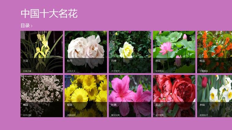 中国十大名花图片