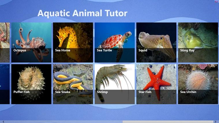 Aquatic Animal Tutor ekrānuzņēmums 0